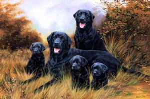 Original Black Labrador & Pups Painting